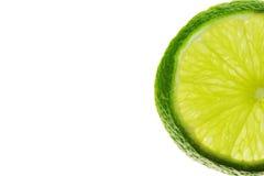 1 limefrukt Royaltyfri Foto