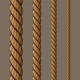 (1) linowy set Obrazy Royalty Free