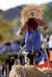 1 lyckliga scarecrow Arkivbild