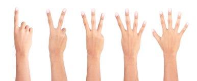 1 mão 2 3 4 5 Fotografia de Stock Royalty Free