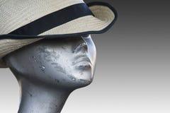 1 manequin 免版税库存照片