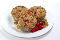 1 muffin των βακκίνιων Στοκ Εικόνες