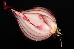 1 onion open red sliced Στοκ Φωτογραφίες