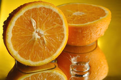 1 orange Arkivbild
