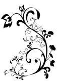 (1) ornament Obrazy Stock