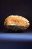 1 Osterei - Gold Stockfoto