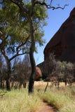 1 outback Arkivbilder