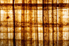 1 papyrus Стоковые Фото