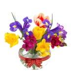 (1) pięknych kwiatów szklana jpg wiosna Fotografia Royalty Free