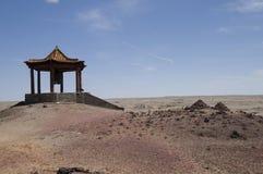 (1) pustynny Gobi Zdjęcie Stock