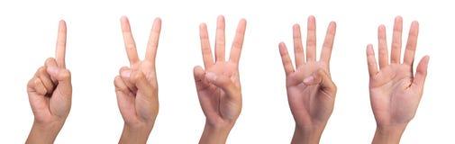 1 räknande bild s för finger 5 till kvinnan Arkivfoton