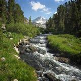 1 rock creek obrazy royalty free