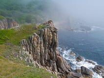 1 seacoast απότομων βράχων Στοκ φωτογραφία με δικαίωμα ελεύθερης χρήσης
