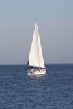 1 segelbåt royaltyfria foton