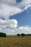 1 skyscape 库存照片