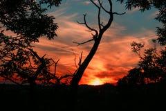 1 solnedgång arkivbilder