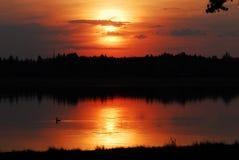 1 solnedgång Arkivfoton