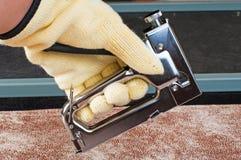 1 stapler Στοκ Εικόνες