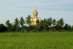 1 stora buddha lantgårdrice Royaltyfri Foto