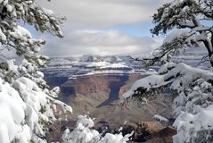 1 storslagna vinter för kanjon Arkivbild