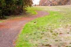 1 strada di autunno Fotografia Stock