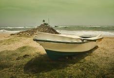 1 strandsinigama Arkivfoto