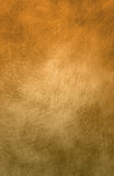 1 tła green płótna złota Zdjęcia Royalty Free