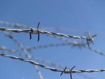 1 taggtråd Arkivbild