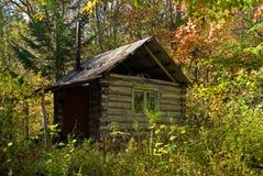 1 taiga della cabina Immagini Stock
