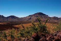 1 teide βουνών EL Στοκ Φωτογραφία