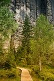 1 teplice βράχων adrspach Στοκ Εικόνες