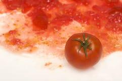 1 tomat royaltyfri bild