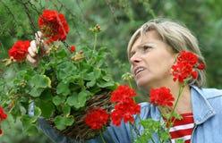 1 trädgård Royaltyfria Bilder