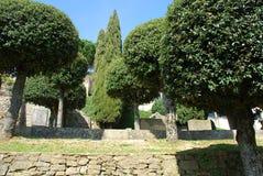 1 trädgårdar offentliga tuscany Arkivfoto