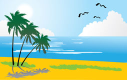 1 tropiska stranddag Royaltyfri Bild