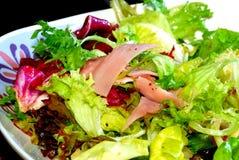 1 verdura di serie dell'insalata Fotografia Stock Libera da Diritti