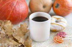 1 white Cup of coffee among pumpkins, one Donat with icing, loll Stock Images