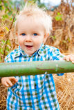 1 Year Old Boy Stock Photography