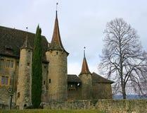 10个城堡瑞士 免版税库存图片