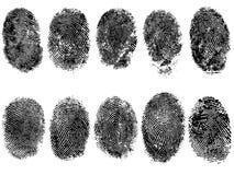 10个指纹 免版税库存照片