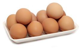 10个鸡鸡蛋 库存图片