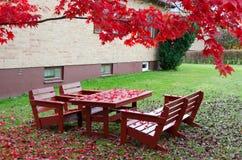 10月的庭院风景 免版税库存照片