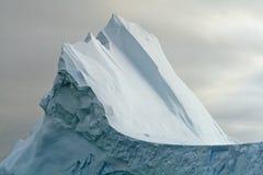 10雄鸭冰山段落 库存图片