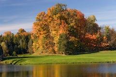 10高尔夫球视图 图库摄影