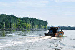 10 łodzi las zdjęcia royalty free