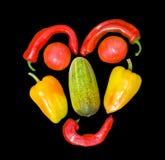 10 λαχανικά προσώπου Στοκ εικόνα με δικαίωμα ελεύθερης χρήσης