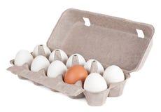 10 яичек в коробке. На белой предпосылке Стоковые Фото