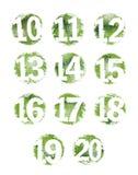 10 20 texturisés réglés de nombre grunge vert Photos libres de droits