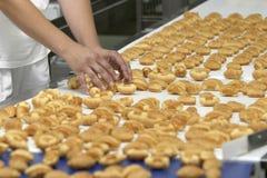 индустрия 10 конфет Стоковые Фотографии RF