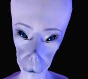 Чужеземец 10 Стоковое фото RF